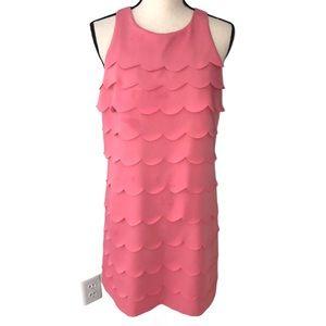 White House Black Market pink scalloped dress Sz 8